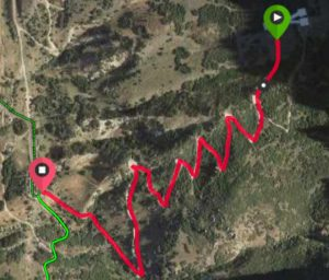 Y Mountain Trail Map.