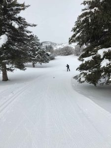 Beautiful, perfectly groomed cross country skiing trails on the golf course at Wasatch Mountain State Park