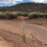 Jurassic Trail Crosses a Wash