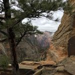 Peeking Back at Zion Canyon